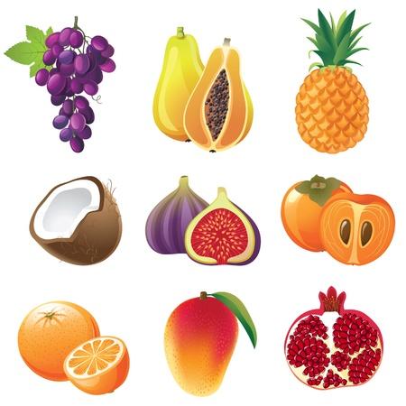 feuille de vigne: Très détaillées icônes fruits mis en