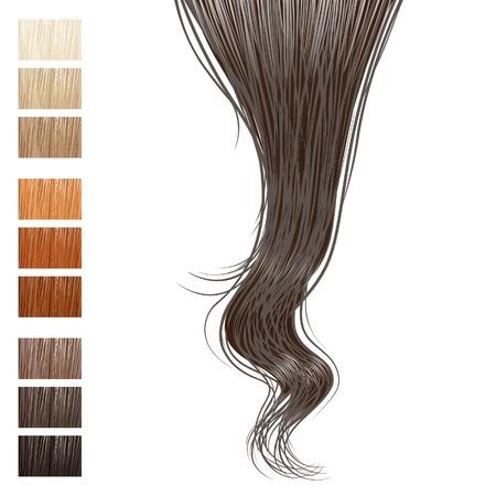 Haarsträhne und verschiedene Haarfarben Vektorgrafik
