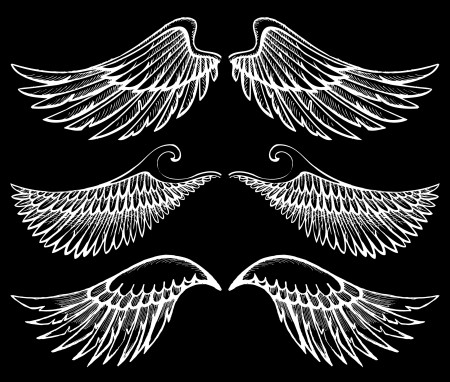 angel white: hand drawn wings set Illustration