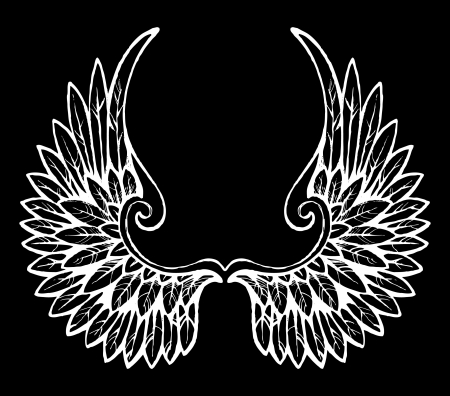 wings angel: hand drawn wings Illustration