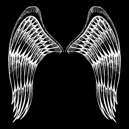 ali angelo: ali disegnate a mano Vettoriali