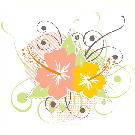 stylized hibiscus flowers Stock Vector - 14270097