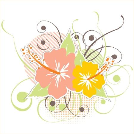hawaii islands: stylized hibiscus flowers
