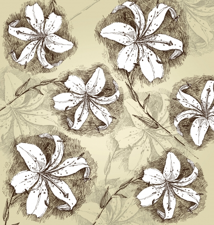 lilly: retro-styled background with stylized hand drawn lilly flowers Illustration