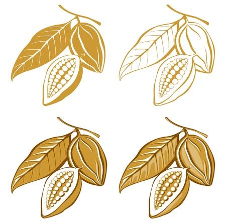 planta de frijol: estilizados iconos de granos de cacao