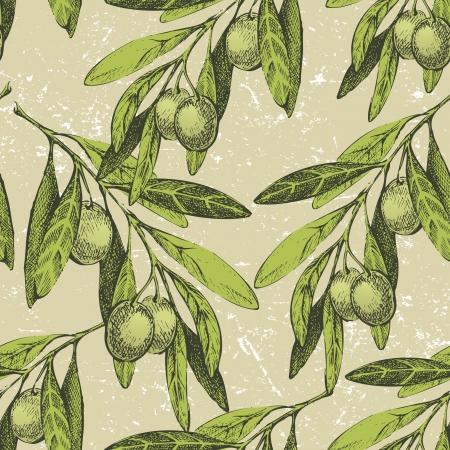 olivo arbol: Ornamento sin fisuras con la mano dibujada ramas de olivo