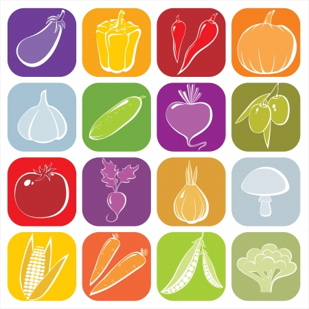 Bright 16 vegetables icons Vector