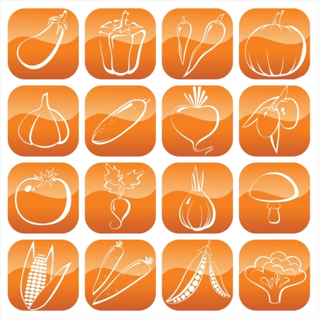 16 vegetables line icons Vector