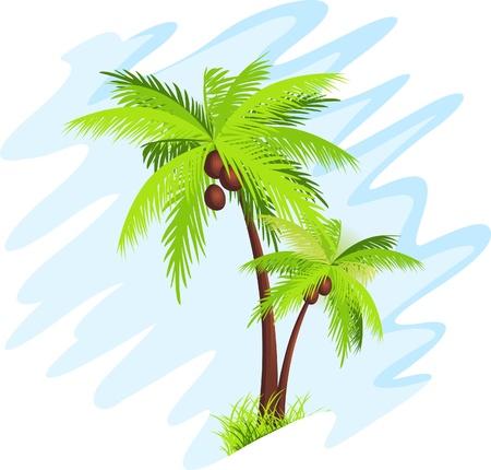 sol caricatura: palmera Vectores