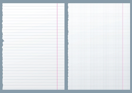 graph paper: 2 paper pages