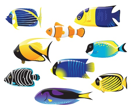 tropical fish: sea fish icons