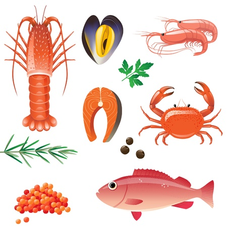 Highly detailed seafood icons set Vector