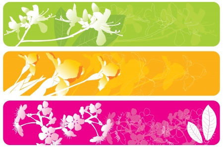 spring banners Stock Vector - 14270478