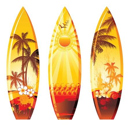 tablas de surf de colores
