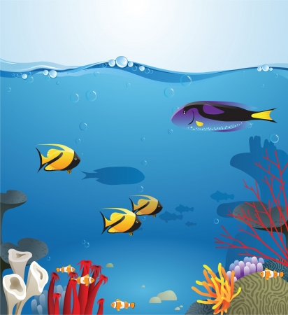 marine scene: Sea landscape illustrating underwater life