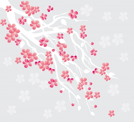 blossom tree branch Vector