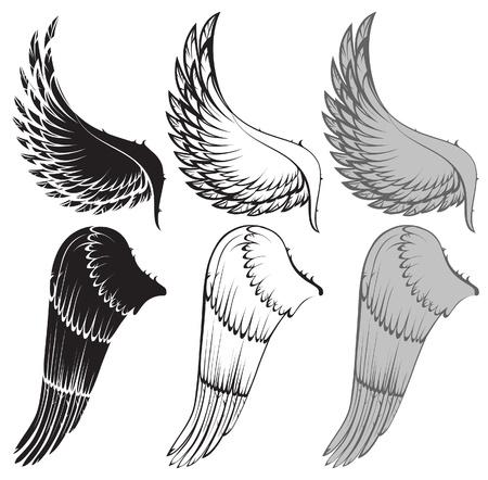 tatouage ange: ailes en 3 variations de couleur