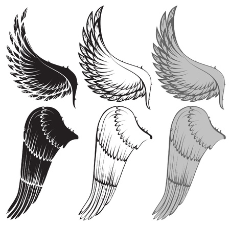 angel white: wings in 3 color variations