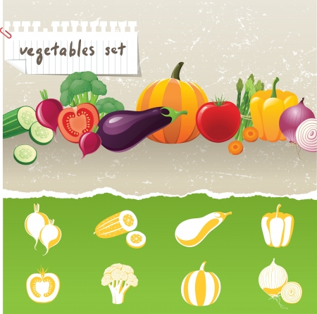 vegetables border and 8 stylized vegetables icons Stock Vector - 14332260