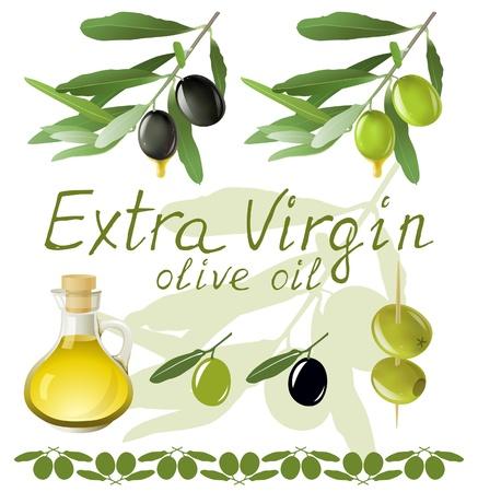 aceite de oliva virgen extra: Aceitunas negras y verdes y aceite de oliva Vectores