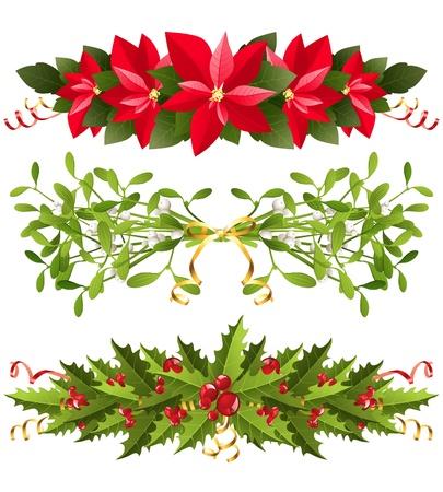flor de pascua: Navidad fronteras con plantas tradicionales Vectores