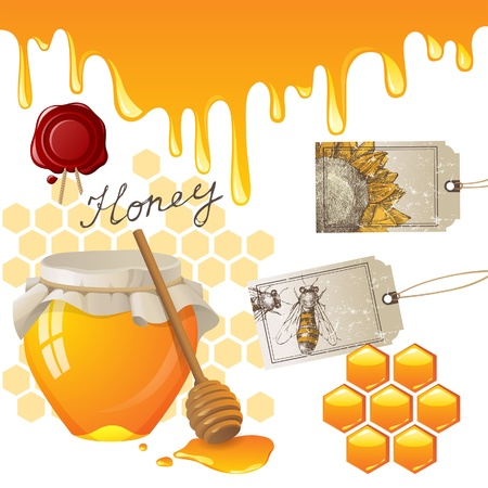 abejas panal: Iconos de miel establecer