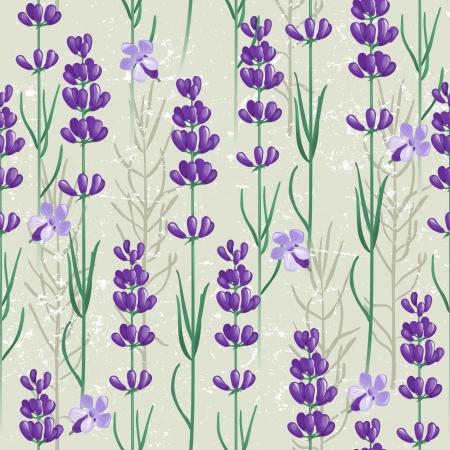 lavanda: Ornamento sin fisuras con flores de lavanda Vectores