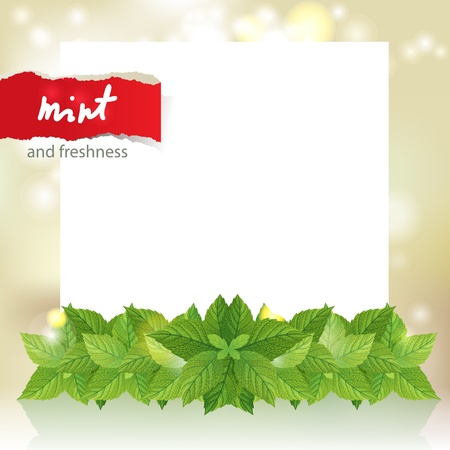 Bright background with mint border and place for your text Stock Vector - 16965912