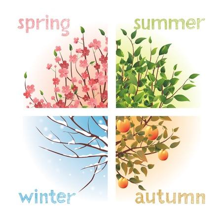 seasons: 4 seizoenen in 1 boom