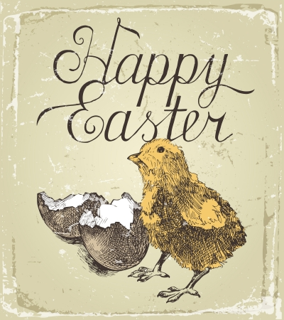 Hand drawn Easter card with small chick Vector