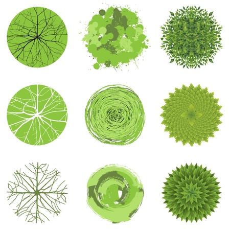 bovenaanzicht plant: Bomen - bovenaanzicht Gemakkelijk te gebruiken in uw landschapsontwerp projecten Stock Illustratie
