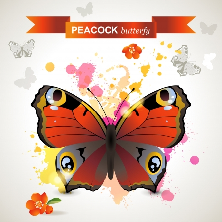 multi colors: Peacock butterfly over bright background