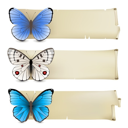 morpho: Retro-styled banners with butterflies