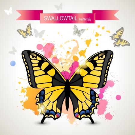 swallowtail butterfly: Swallowtail butterfly over bright background