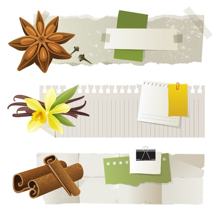 3 paper banners with anise, vanilla and cinnamon Vector