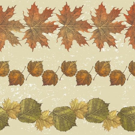 3 hand drawn borders from autumn leaves Stock Vector - 20422915