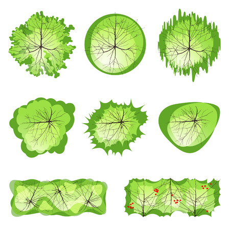 top round: Trees - top view. Easy to use in your landscape design projects!  Illustration