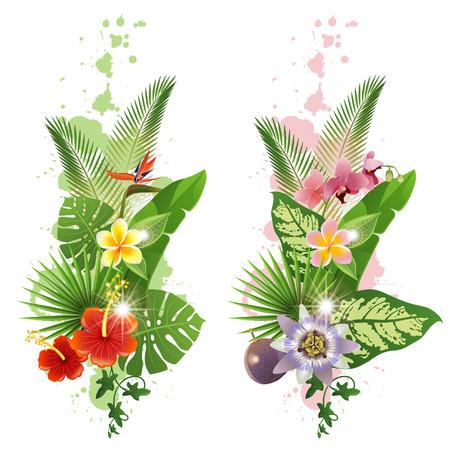 Heldere tropische bladeren en bloemen