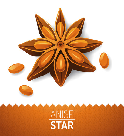 Anise star over white background