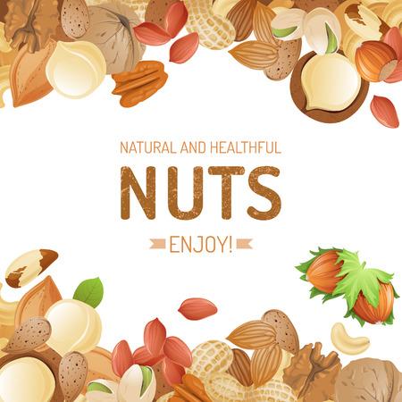 cacahuate: Fondo brillante con diferentes frutos secos Vectores
