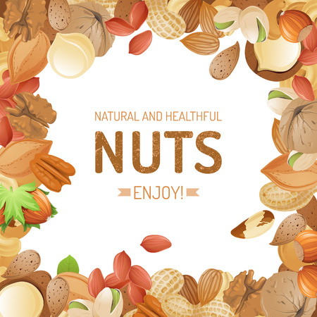 hazelnuts: Bright background with different nuts