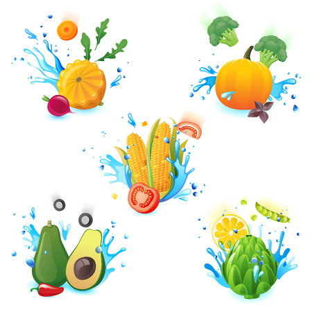 fresh vegetables falling in water splashes Vector