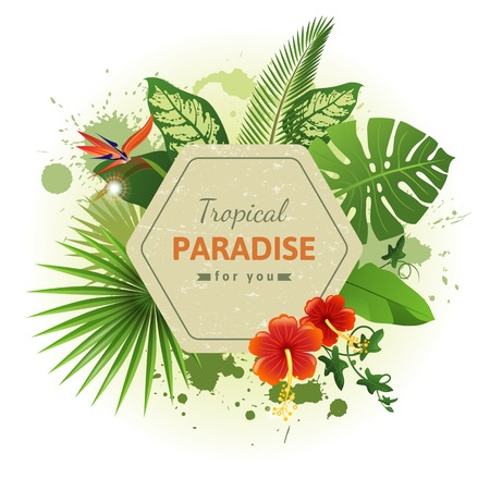 hibisco: Fondo tropical con flores y plantas