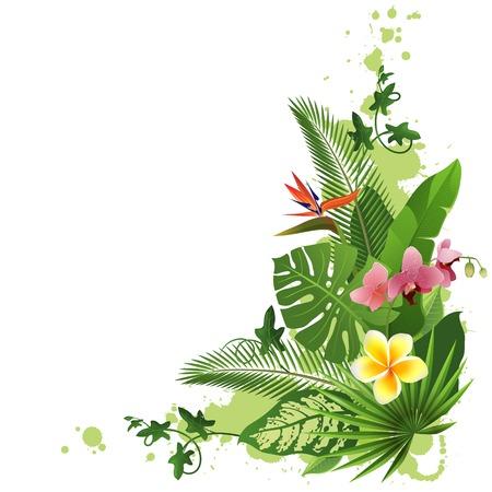 hula: Fondo tropical con flores y plantas
