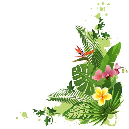 tropical background with flowers and plants