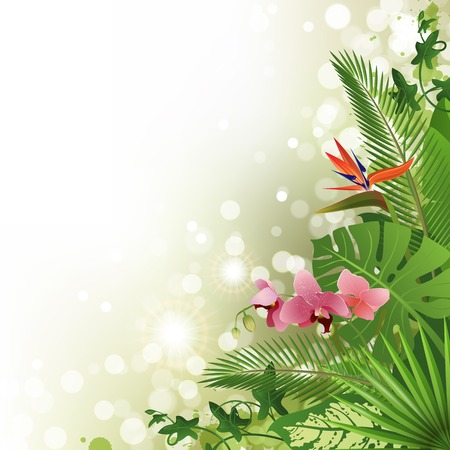 philodendron: Tropical background with flowers and plants Illustration