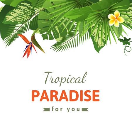 Tropical background with flowers and plants Ilustração