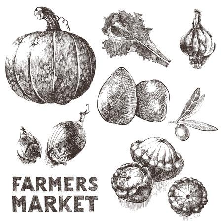cymbling: 7 hand drawn vegetables icons