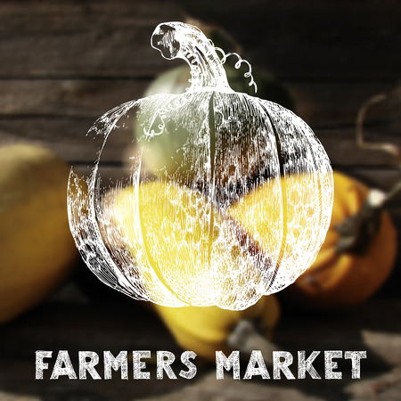Farmers market poster with hand drawn pumpkin Vector