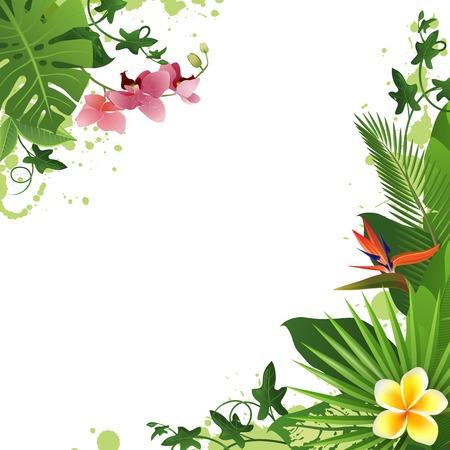 Sfondo tropicale con fiori e piante